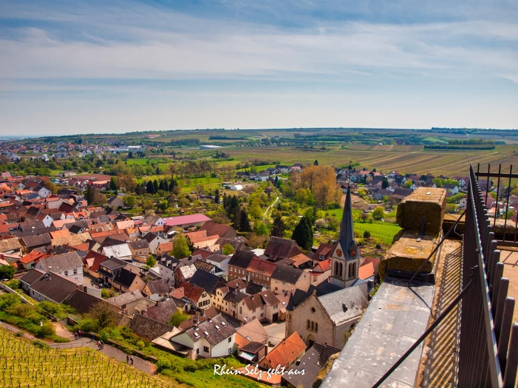 3Tuerme-Wanderung-Blick-vom-Schwabsburger-Turm