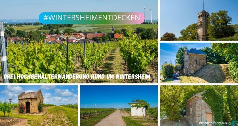 Wanderung-Wintersheim_K83_20200613-140823_1
