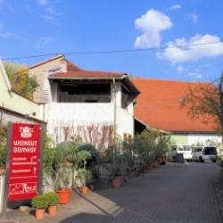 image de Der Domhof
